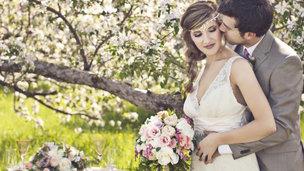casamentos de acordo com cada signo